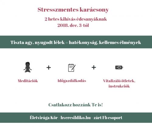 karácsonyi kihívás plakát
